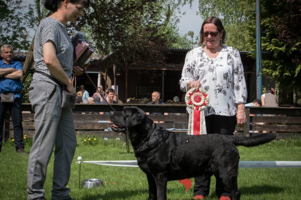 SRA-Kelkheim-2018_champion-male-4J3A2502